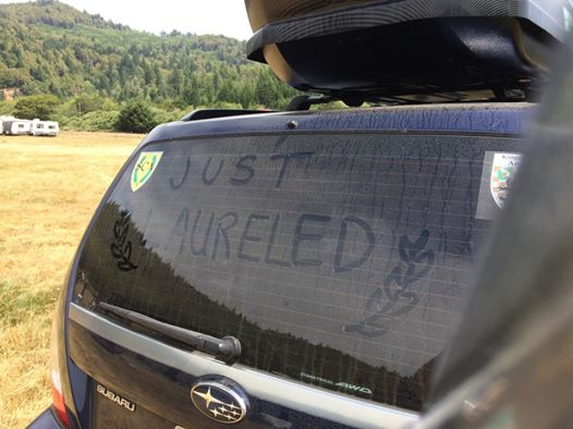 A car windshield with JUST LAURELED and a laurel wreath written in the dust
